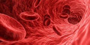 FBG sensors in biomedical applications